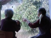 ニッケてとて加古川 「日常のひととき」の画像