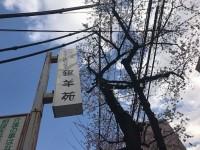 ニッケ銀羊苑 荒川 「春の名物!!!」の画像