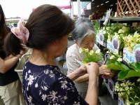 ニッケふれあいセンター今伊勢 「お花を植えました!」の画像