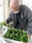 ニッケつどい加古川 「野菜収穫」の画像