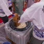 てとてニッケタウン 「銀羊苑餅つき大会」の画像
