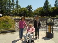 ニッケてとて本町 「靭公園 バラ園散策」の画像