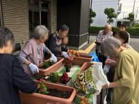 ニッケあすも加古川 「園芸クラブ発足!」の画像