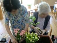 ニッケつどい加古川 「園芸の日」の画像