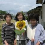 ニッケつどい加古川 「ひまわりが咲きました」の画像