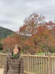 ニッケれんげの家・加古川 「紅葉ドライブへ行ってきました!」の画像