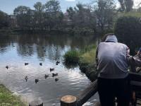 ニッケあすも市川 「じゅん菜池緑地公園~密を避けた秋の息抜き散歩」の画像