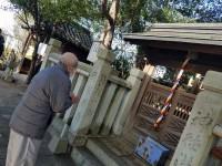 ニッケあすも加古川 「いざ初詣へ!」の画像