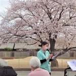 ニッケつどい加古川 「お花見☆」の画像
