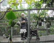 ニッケつどい加古川 「みとろ植物園」の画像