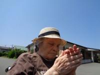 ニッケてとて加古川 「晴れた日☀」の画像